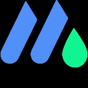mountainFLOW - logo